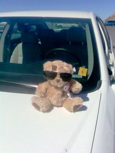 En voiture pour la Vallée de la mort
