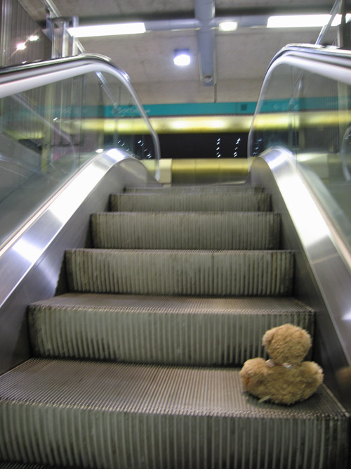 Friedrich monte l'escalator
