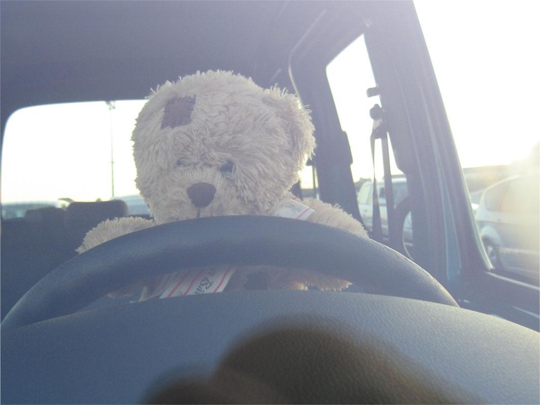 Friedrich au volant