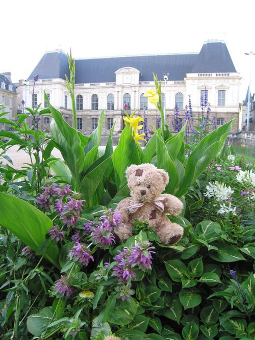 Friedrich devant le parlement