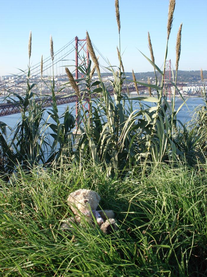 friedrich et le pont du 25 avril