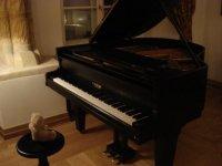 Friedrich_au_piano.JPG