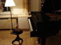 Friedrich_au_piano_1.JPG