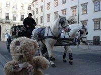 Hofburg2.jpg